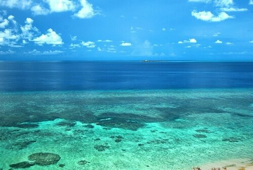 apo-reef.jpg