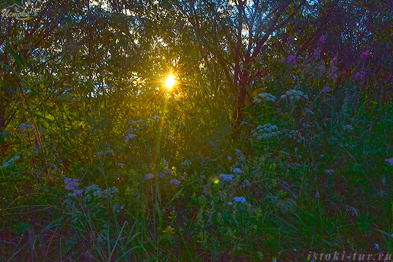 солнце_solntse