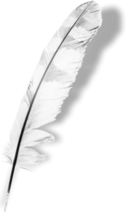 перья белые