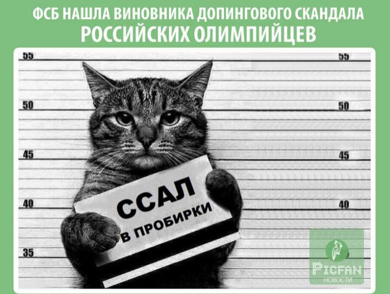 https://img-fotki.yandex.ru/get/372565/354494835.8c/0_188bce_a65c283f_orig.png