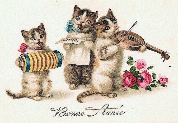 Куплю открытки с кошками, поздравления свадьбу
