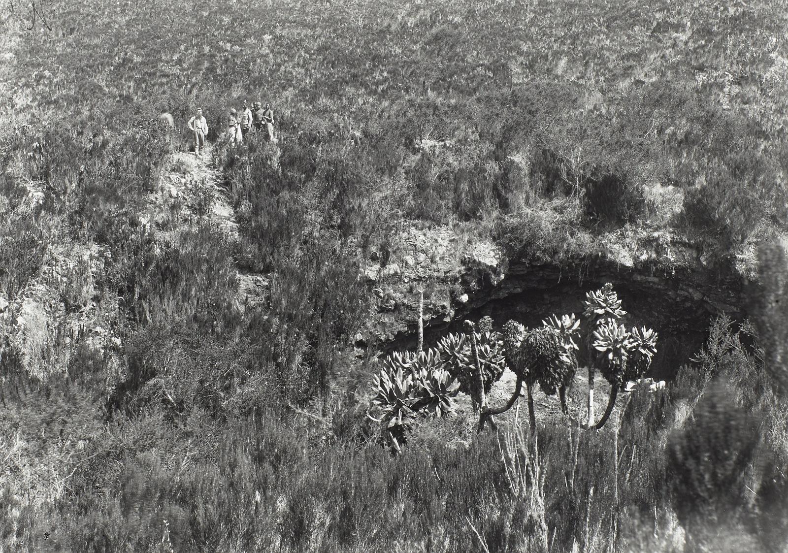32. Килиманджаро. Участники экспедиции в Мбасхалеле