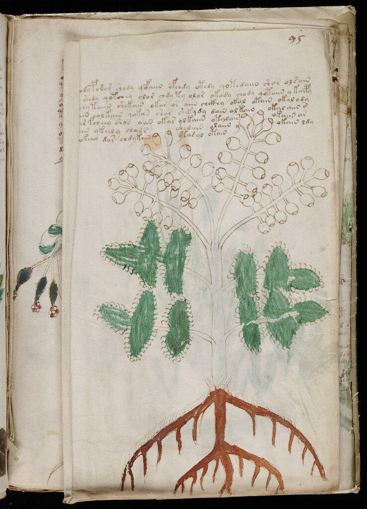 manuscrito169.jpg