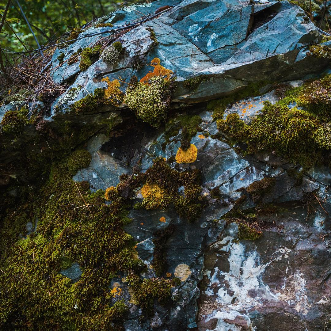 Гейзерное озеро и другие красоты Алтая