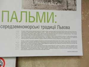 https://img-fotki.yandex.ru/get/372697/184459687.2b7/0_1b43d6_4776a0da_M.jpg