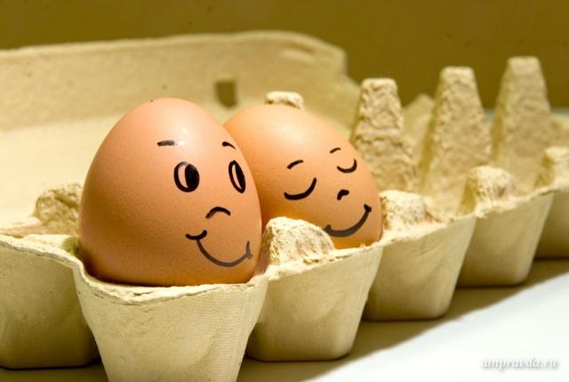 Всемирный день яйца. Спящая красавица