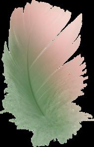 перья зеленые