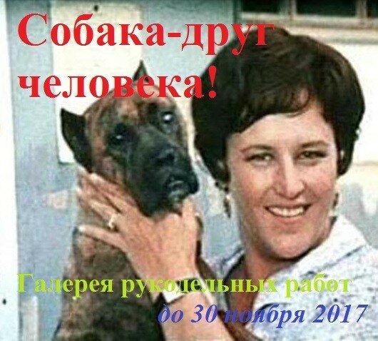 """Галерея  """"Собака - друг человека"""""""