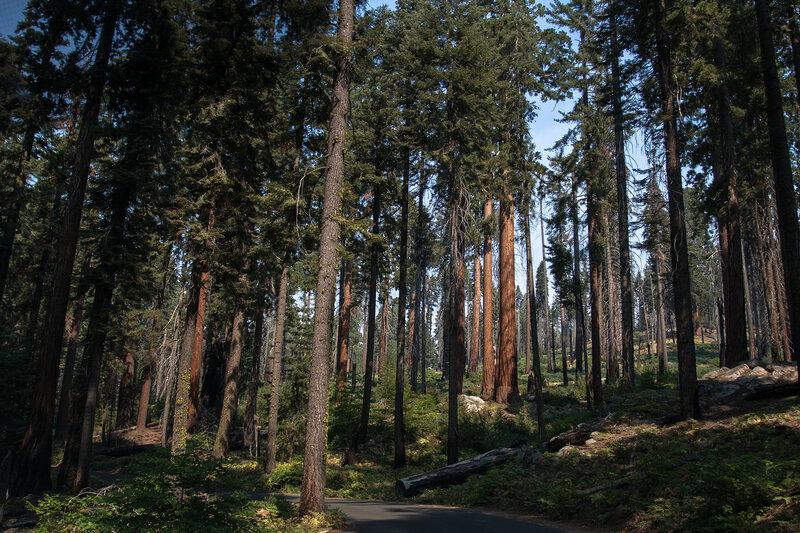 Запад США и Йеллоустон -  6300 км мечты