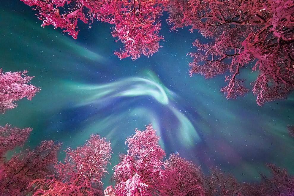 7. Планетарная туманность Медуза в созвездии Близнецов. Названа по имени существа из древнегреч