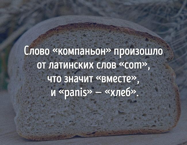 © pixabay      Доказательство