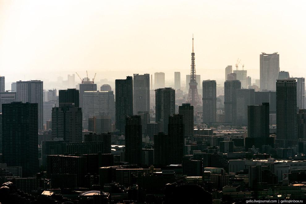 56. Современная дорожная система не спасает Токио от автомобильных заторов. Правда, «затором» в стол