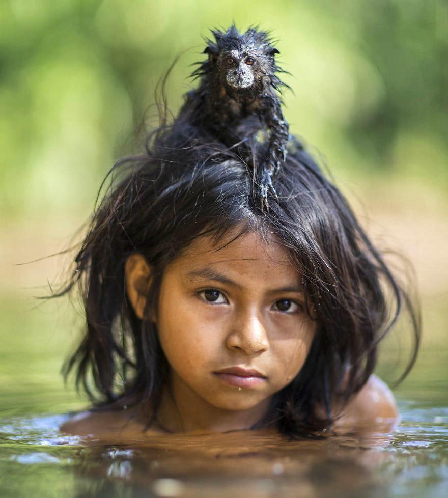 Работы Чарли Хилтона Джеймса с обезьянами и их друзьями — это невероятно. В National Geographic Джей