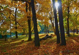 В старом парке тихо опадают листья