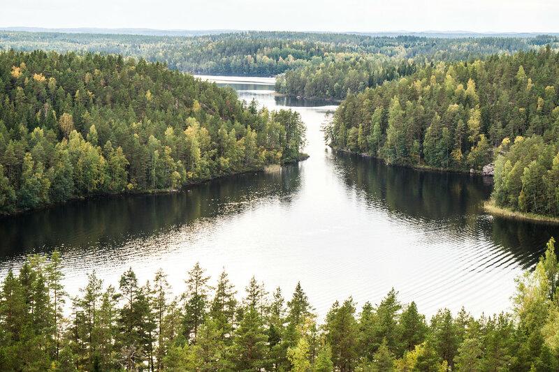 парк реповеси (Repovesi) пейзаж на вышке Mustalamminvuori