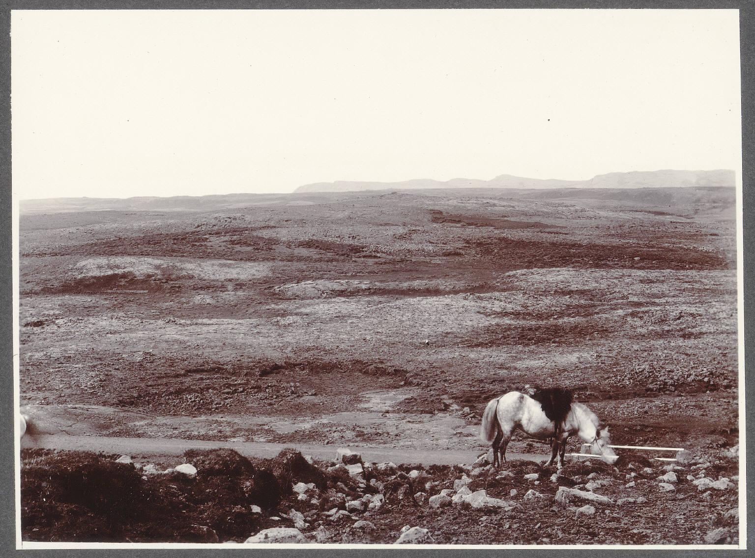 Лавовое поле. Дорога из Рейкьявика в Эльвег
