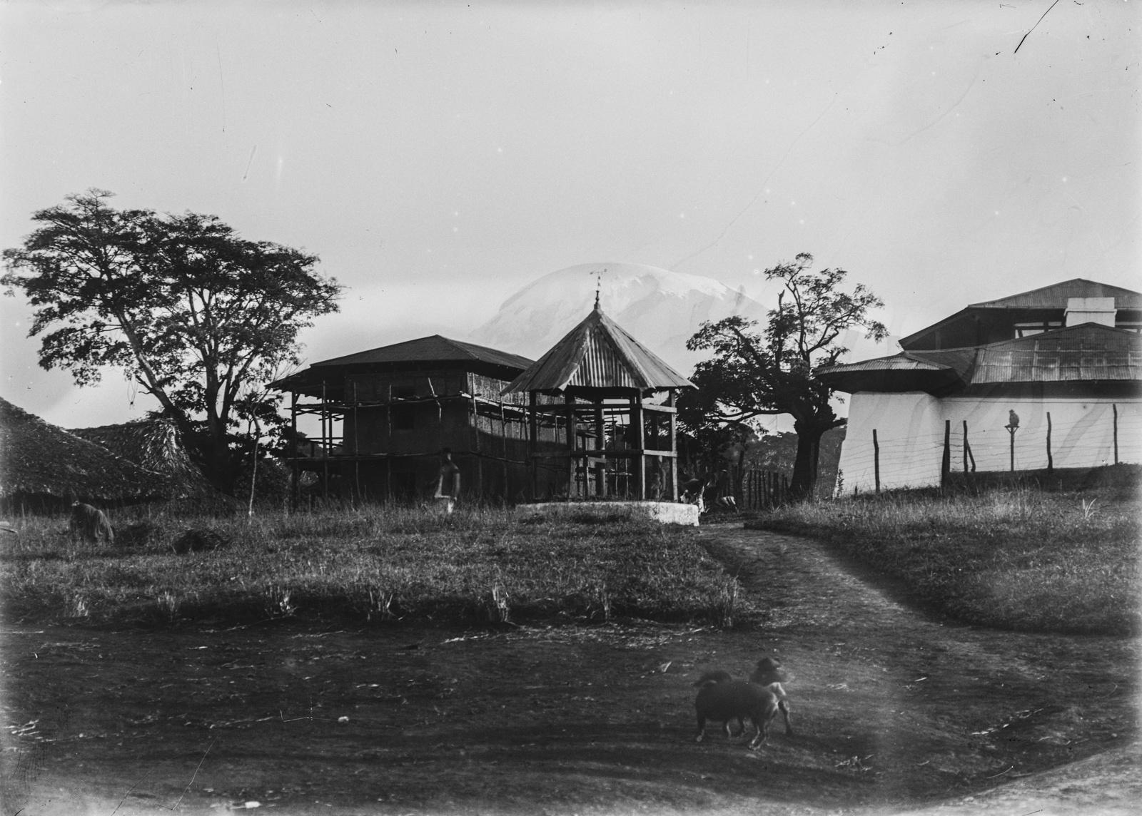 118. Станция немецкого общества Восточной Африки (ДОАГ) в Моши