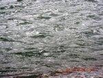 Вода реки..JPG
