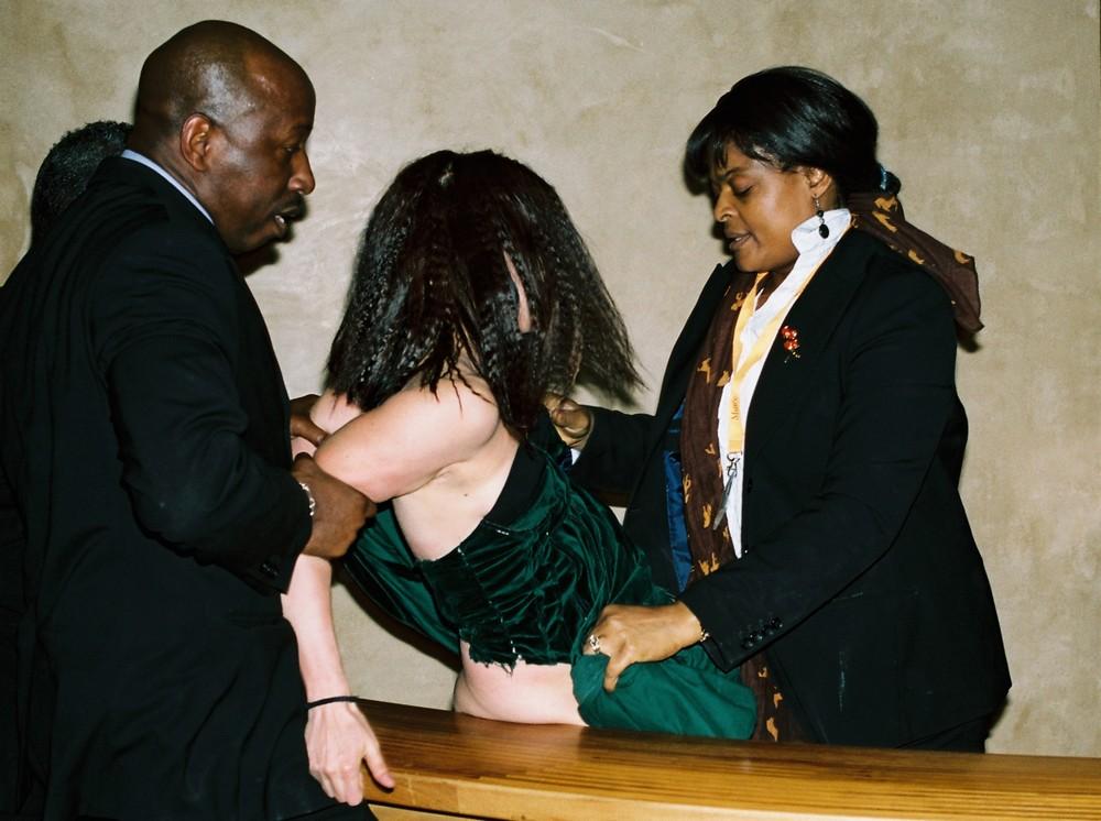 Художница оголила гениталии в Лувре