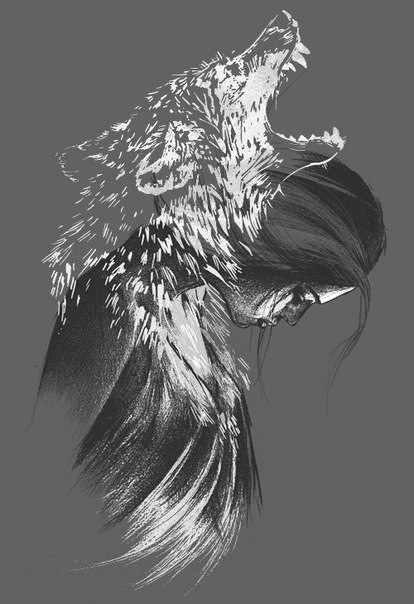 волки-6.jpg