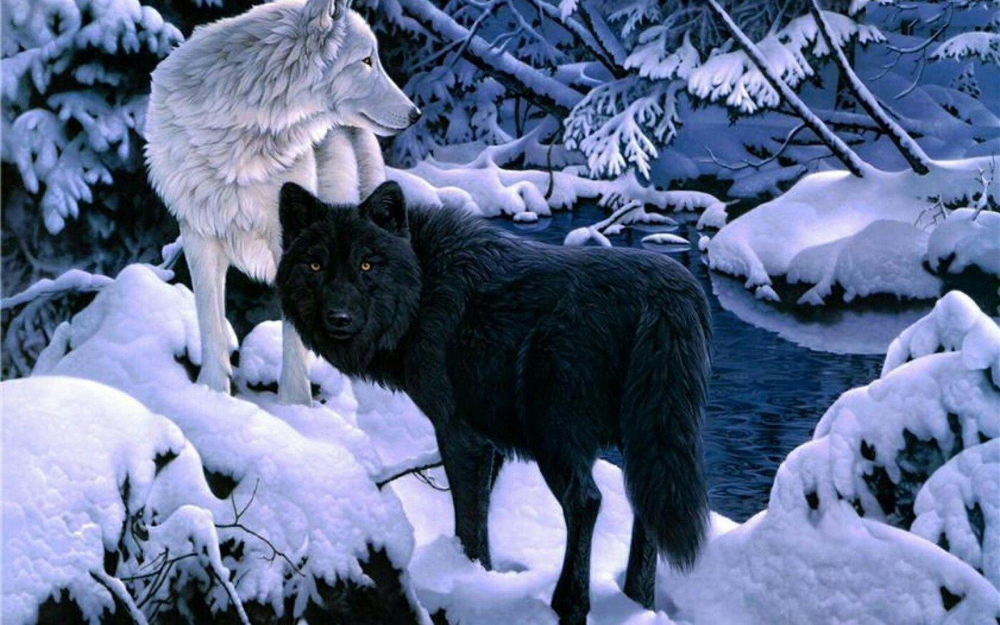 волки-5.jpg