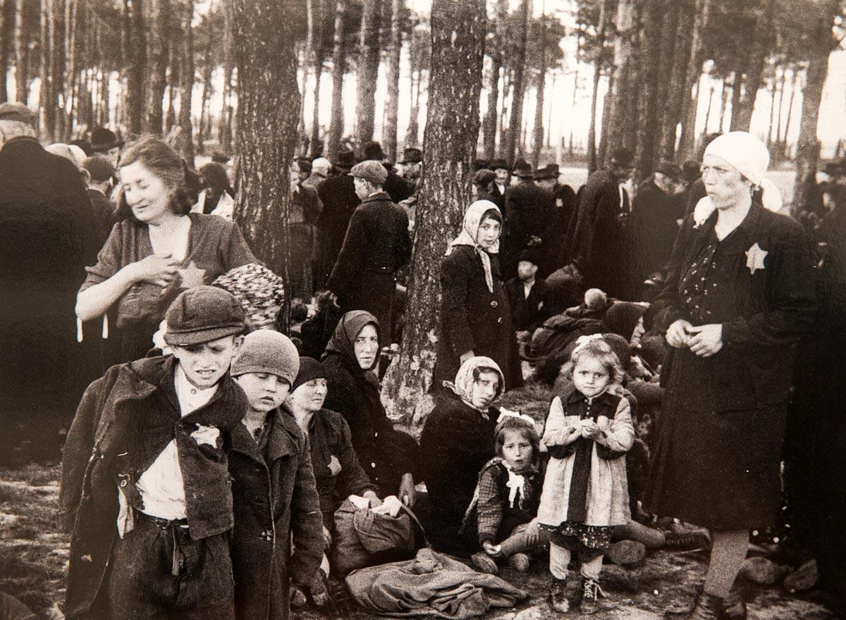 Фото дети концлагеря освенцим