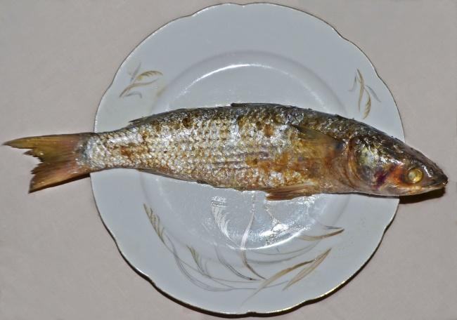 © Wikipedia Commons     Этот дурно пахнущий деликатес родом изЕгипта ипредставляет собо