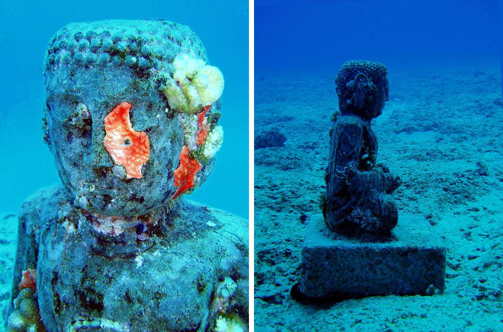 «Потерявшийся корреспондент». Всего год подводной жизни на Гренаде превратили его в искусстве