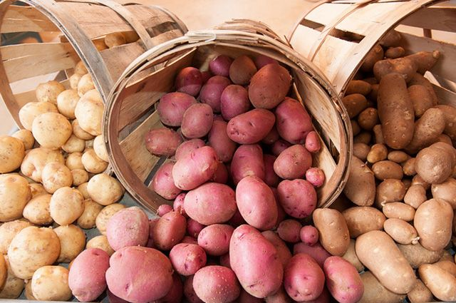 РФможет ограничить ввоз сербских фруктов при повторных выявлениях подкарантинных объектов