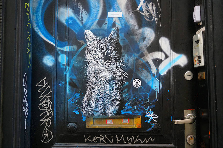 After the French artist C215 used his spray-paint cans and his stencils, felines invade the city, it