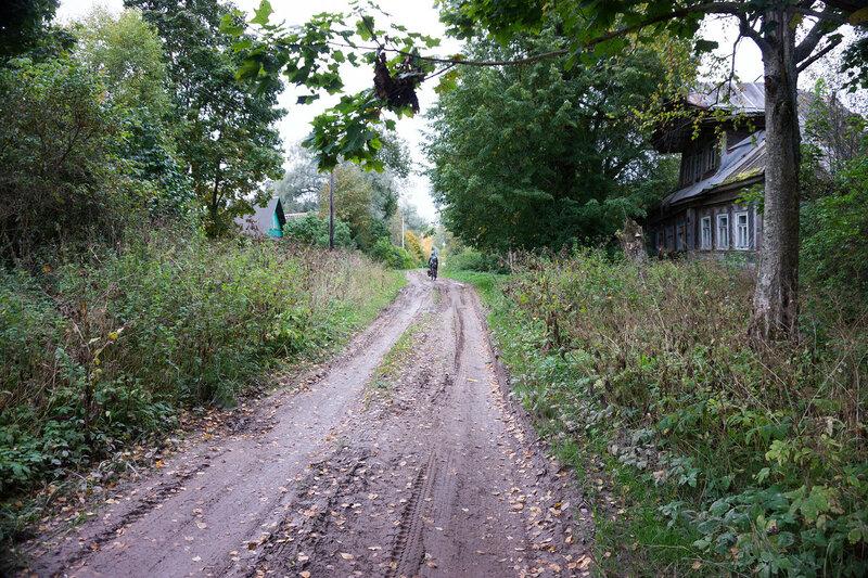 деревня Ушницы, Ленинградская область