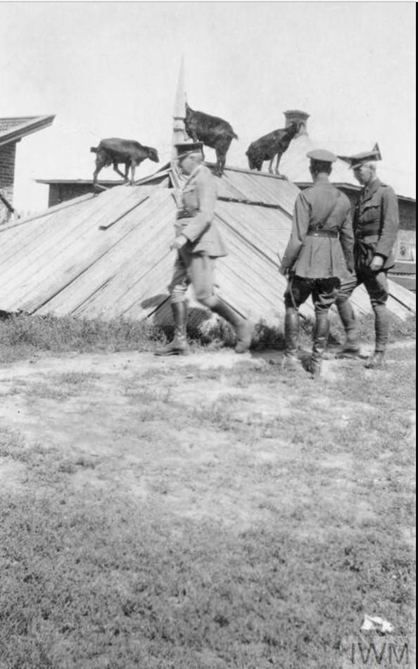 Генерал-майор Херберт С. Холман, глава британской военной миссии в Южной России и еще один офицер миссии Гарольд Вильямс в Полтаве. Август 1919