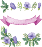 цв.png