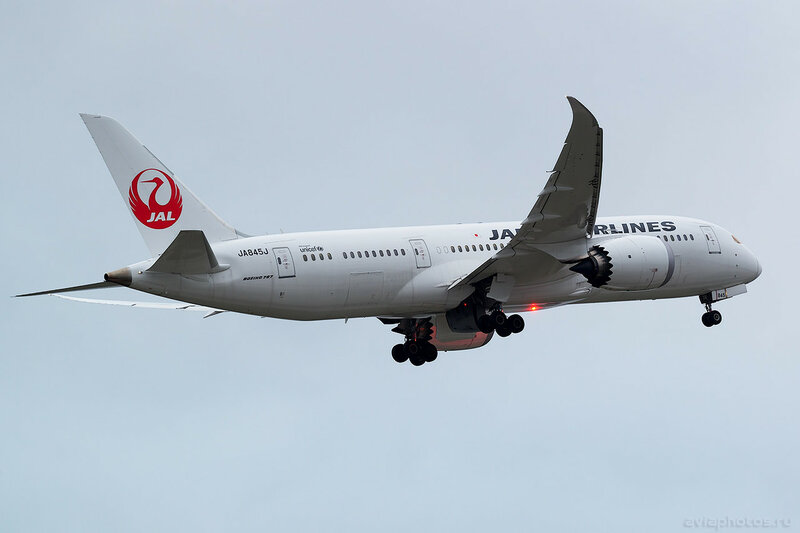 Boeing 787-8 (JA845J) Japan Airlines - JAL 0464_D805745