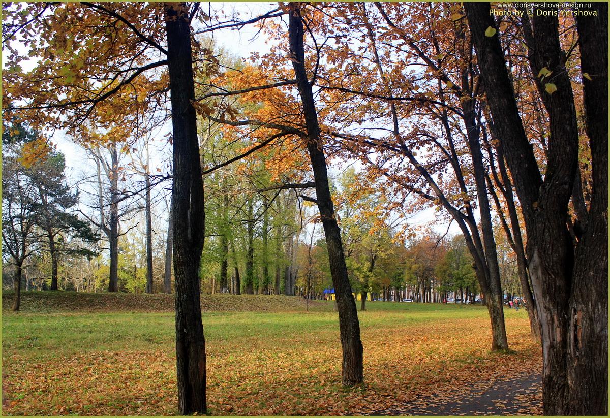 Осень. Зеньковский парк.Фото - Дорис Ершова