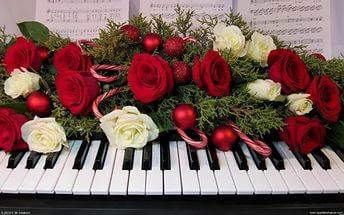 С днем музыки. Цветы