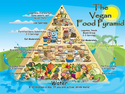 1 ноября. Всемирный день вегана. Пирамида потребления вегетарианцев