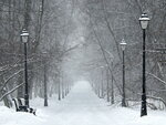Я иду по засыпанной снегом аллее