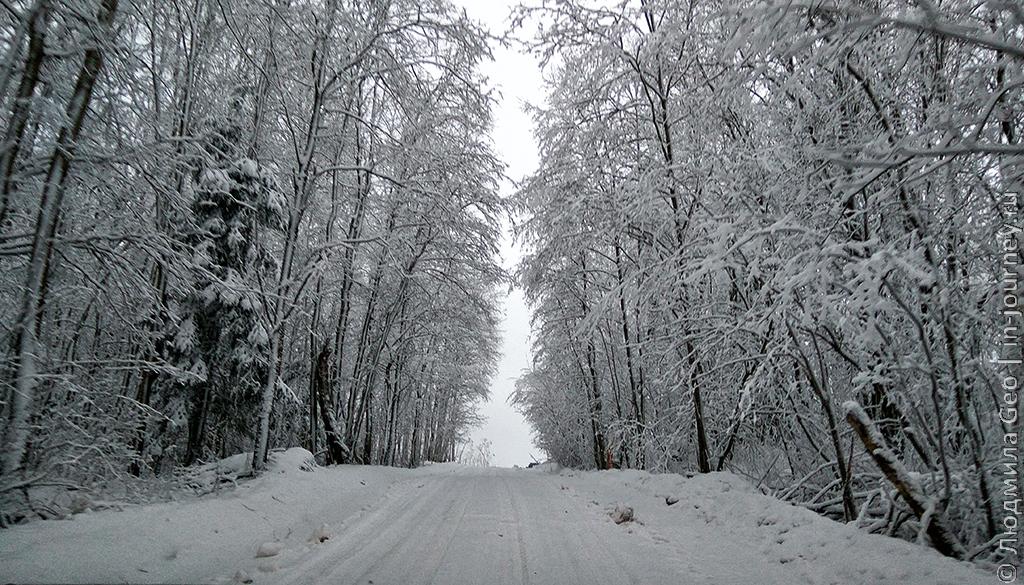 Дорога зимой к памятнику Сийранмяки