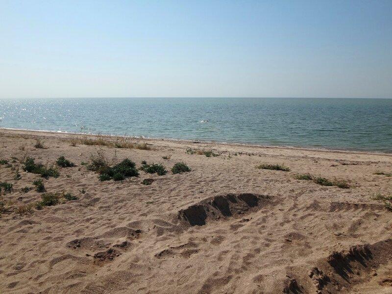 Ура! Прекрасны воды Азовские, где можно смыть пот и пыль велопробега!  ...  26. Фото из велокольца. Ахтари-Староминская-Бейсугский пролив (169).JPG
