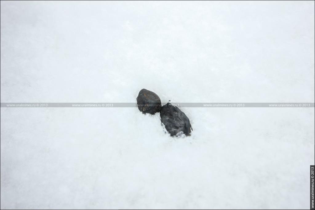Экспедиция по сбору Челябинского метеорита
