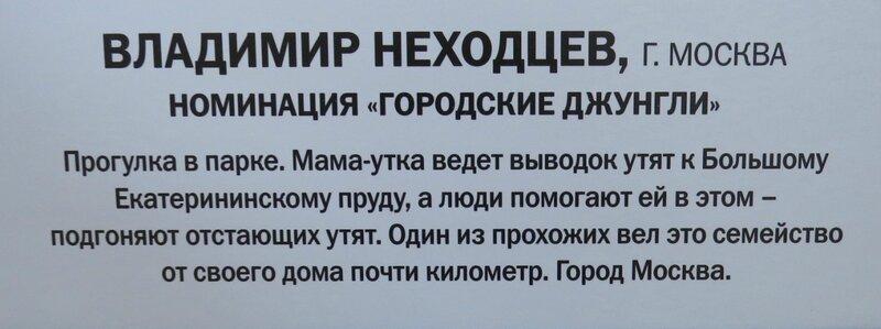 https://img-fotki.yandex.ru/get/373240/140132613.6a5/0_240ad9_72472bc6_XL.jpg