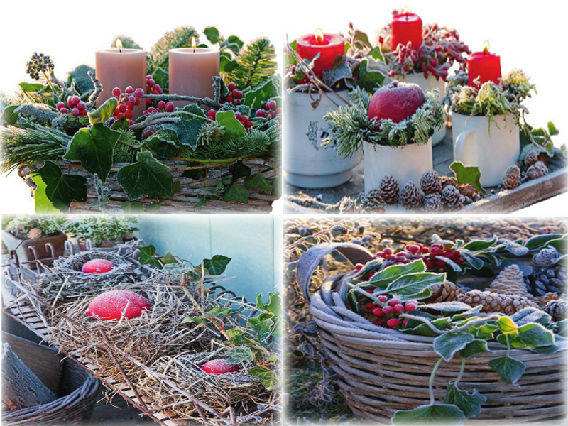 Сад в декабре — Украшения для сада к Новому Году из подручных средств