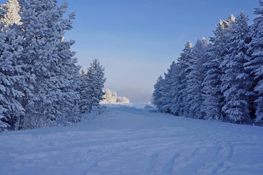Зима картинки