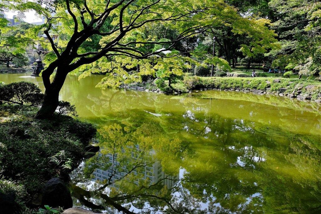Пaрк Hibiya Токио