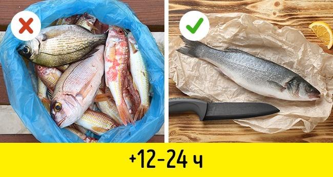 10маленьких хитростей, как идеально сохранить свежую рыбу (6 фото)