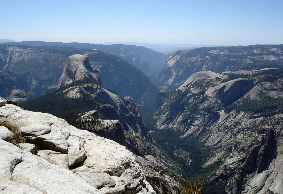 Несмотря на богатую растительность и принятые природоохранные меры, в обозримом прошлом 3 вид