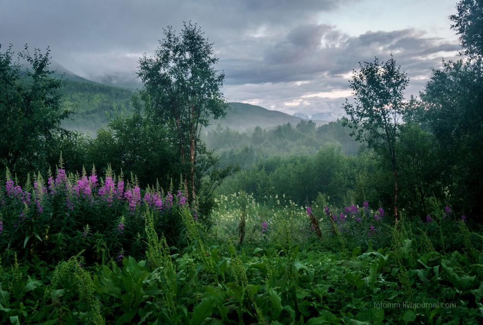 24. Как то не характерно для Норвегии — брошенный в лесу автомобиль. Обычно здесь даже в лесу безуко