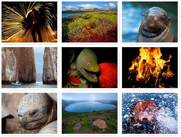 Путешествие на Галапагосские острова. Часть 2 (59 фото)