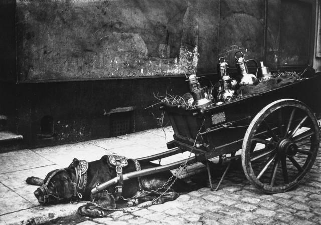Страшные улицы Амстердама 1890-1910 годов (29 фото)